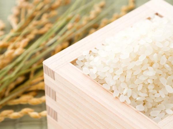 道産米ふっくりんこ